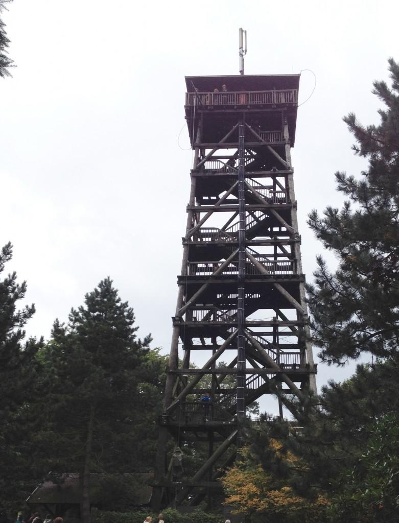 Смотровая вышка Wild Park Schwarze Berge.