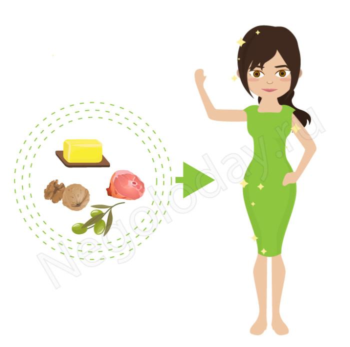 Жиры в продуктах питания полезны и необходимы